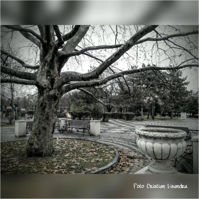 PicsArt_11-27-03.03.13