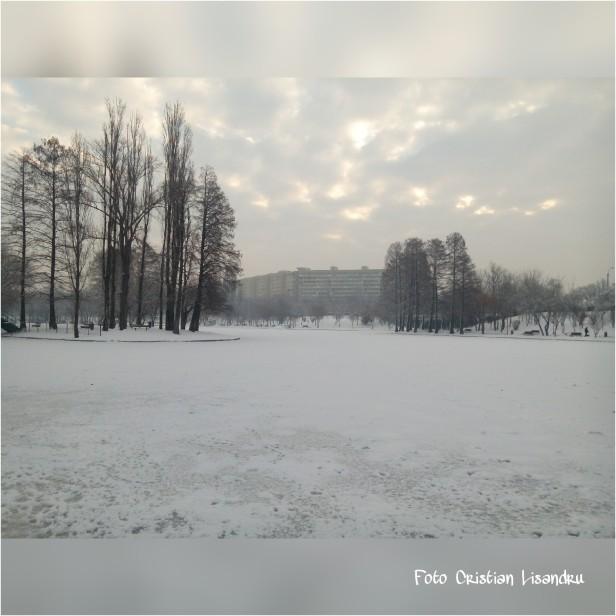 PicsArt_01-22-11.10.36