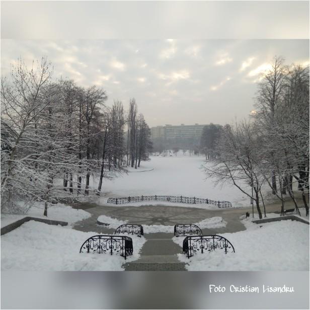 PicsArt_01-22-11.11.13
