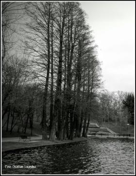 PicsArt_02-19-06.47.42