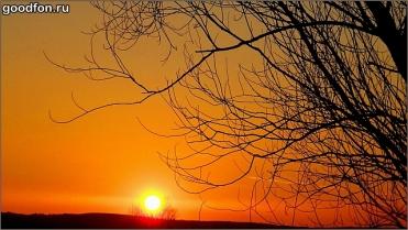 nature-sunset-priroda-zakat-5345